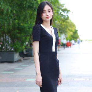 Đầm Công Sở Ngắn Tay